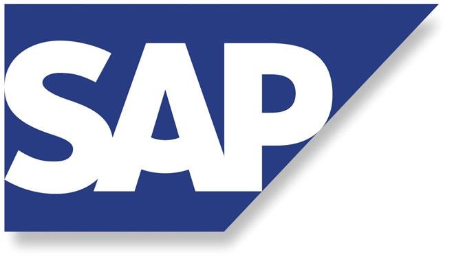 Resultado de imagem para Maioria dos usuários SAP pretende continuar com versão atual de ERP