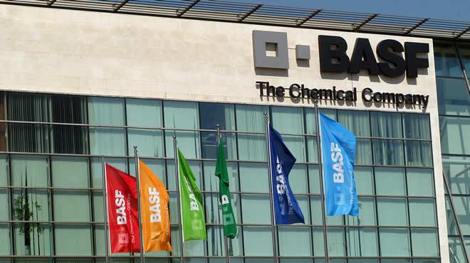 BASF-trainee