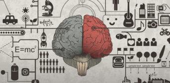 cerebro empreendedor