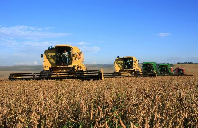Como evitar acidentes no meio agrícola