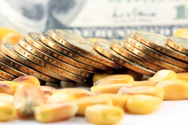 Ao investir em commodities você pode diversificar suas possibilidades e sustentar os investimentos durante a crise.