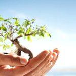 pos-graduacao-gestao-ambiental